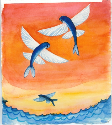 flying fish watercolor by Claudia Makeyev